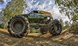 Monster Truck selber fahren in Lingen (Ems)