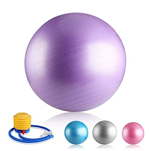 easy-eagle-yoga-fitness-exercise-ball-gym-swiss-ball-anti-burst-with-pump-plug-65cm-purple