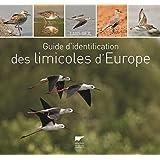 Limicoles d'Europe