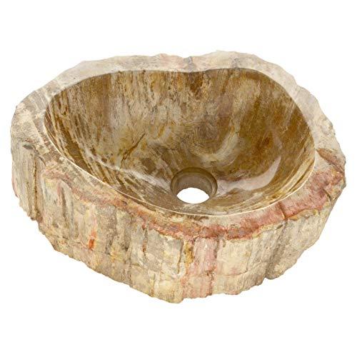 Divero HF55745 versteinertes Holz Waschschale Aufsatz-Waschbecken Handwaschbecken Fossil max. 22 kg innen poliert außen naturbelassen helle Färbung mit Dunkeln Akzenten, bräunlich