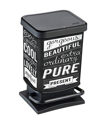Rotho Paso - Contenedor de basura ermético a olores, con pedal, 20 L, Negro, 29,3 x 26,6 x 45,7 cm