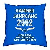Hammer Jahrgang 2002 Sprüche Kissen 40x40 für die ganze Familie Geschenk zum 16 Geburtstag Geburtstagsgeschenk Sohn Tochter : royal-blau