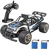 Crenova elektronisch ferngesteuertes Auto funkferngesteuerter Gel?ndewagen startbereit Buggy Monster Truck 1:16 2WD 2.4Ghz Hochgeschwindigkeit mit aufladbaren Batterien