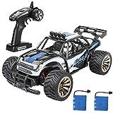 crenova Elektro RC Auto Offroad Fernbedienung Auto RTR RC Buggy RC Monster Truck 1: 162WD 2,4GHz High Speed mit 2Akku