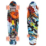 WeSkate 55cm Mini Cruiser Skateboard Gemustertes Retro Board mit stabilen Deck 4 PU-Rollen für Kinder, Jugendliche und Erwachsene (Farbenreicher Fels)