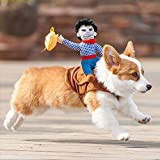WANGLAI Lustiges Haustierkostüm/Hundeoutfits/Haustierkostüm/Halloweenanzug/Cowboyreiter-Stil/Partykleidung für Hunde