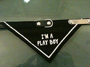 """Collier bandana noir 34cm pour chien et chat """" i'm a play boy """""""