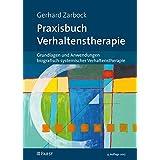 Praxisbuch Verhaltenstherapie: Grundlagen und Anwendungen biografisch-systemischer Verhaltenstherapie