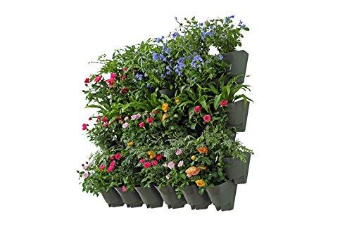 Worth Jardin 36poches mural vertical Jardin Pot de fleurs décoration d'intérieur/extérieur avec système d'arrosage automatique de croissance pour fleurs herbes Vegetabl36