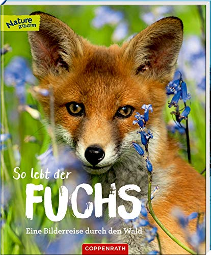 Preisvergleich Produktbild So lebt der Fuchs: Eine Bilderreise durch den Wald (Nature Zoom)