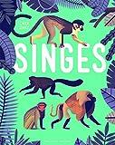 Image de Singes