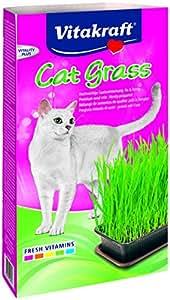 vitakraft 24031 herbe chat cat gras. Black Bedroom Furniture Sets. Home Design Ideas