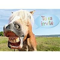 Amazon Fr Anniversaire Cheval Jeux Et Jouets