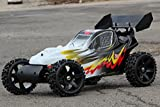 XTC MONSTER BUGGY BRUSHLESS 2WD 80KM/H RC CAR 1:5 AUTO + 2,4GHZ FERNBEDIENUNG