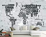 BHXINGMU Wandbild Benutzerdefinierte Wandbild Fototapete Weltkarte Kunst Tapete Schlafzimmer Wanddekoration 240Cm(H)×330Cm(W)