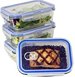Misc Home (Premium 4 Set) BPA Free Glass Food Containers Storage with Airtight Locking Lids, Odour & Stain Resistant, Microwave, Oven, Freezer & Dishwasher Safe Set