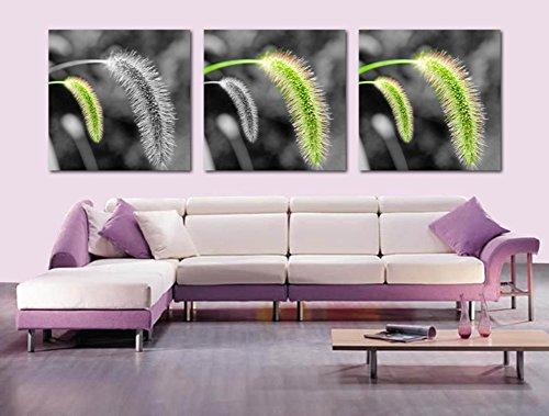 dekorative Malerei im Wohnzimmer Veranda Wandbild/ moderne Gemälde/Triple-Wandbilder/ Sofa Wandfarbe/Haus-Dekoration-Paintings/Der Hund die Rute Grass-A 50x50cm(20x20inch) Veranda Boden Malen