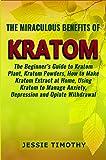 The Miraculous Benefits of KRATOM: The Beginner's Guide to Kratom Plant, Kratom Powders