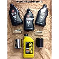 Kit para Hoja Harley Davidson Sportster 883/x 1200, Forty-Eight Iron 883