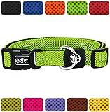 DDOXX Hundehalsband Air Mesh | für große & Kleine Hunde | Katzenhalsband | Halsband | Halsbänder | Hundehalsbänder | Hund Katze Katzen Welpe Welpen | klein breit Leuchtend bunt | Grün, L