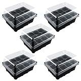 WLGREATSP 12 Cellule Foro Pianta Semi Grow Box, 12 Celle Foro Vivaio Pianta Semi Crescere Box Vassoio Inserisci Propagazione Seed Case