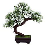#8: Random Bent Bonsai Tree with Green Leaves and White Flowers