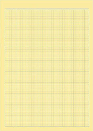 Pads Legal (10 x Notizblock Schreibblock DIN A4 gelbes Papier, kariert, ähnlich Legal Pad)