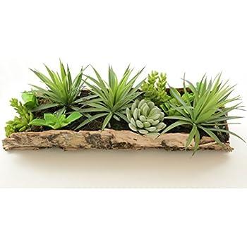 k nstliche sukkulenten arrangement in echtholz rinde 43 x 16cm k nstliche pflanzen. Black Bedroom Furniture Sets. Home Design Ideas