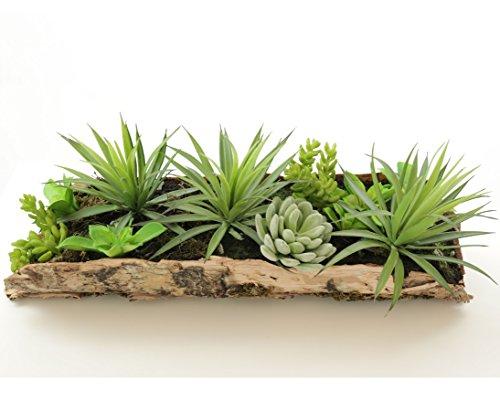 Kunstpflanzen Hochwertig &