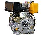 Rotek luftgekühlter 1-Zylinder 4-Takt 306ccm Dieselmotor, ED4-0306-E-F2A