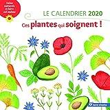 Le calendrier ces plantes qui soignent !