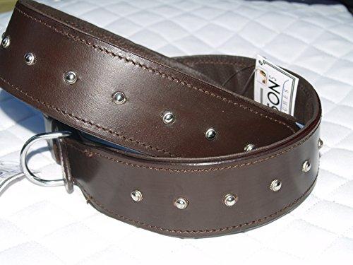 Hundehalsband Braun Lederhalsband Nietenhalsband Nieten EXTRA BREIT Halsband Braun Leder L oder XL (XL) (Nieten-leder Klassische)