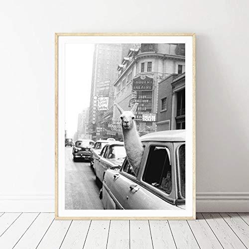 Lama In Einem Taxi Auf Times Square Leinwand Druck Und Poster Vintage Lama Druck New York City Foto Bild Wand Kunst Home Decor Ohne Rahmen 42 * 60cm Stil 1