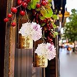 Emotionlite Luce del barattolo di muratore,Applique da parete in legno rustico,Ganci in ferro battuto,Hydrangea di seta e Luci a strisce LED Design per la decorazione domestica(2 pacchi)