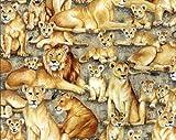 Makower Löwen-Stoff - MAK719 Löwen-Safari, 100% Baumwolle