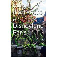 Marre d'attendre à Disneyland Paris (French Edition)