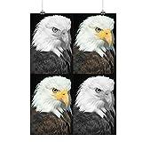 Aigle Liberté Sauvage Animal Gratuit faucon Matte/Glacé Affiche A2 (60cm x 42cm) | Wellcoda