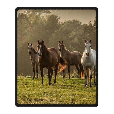 dalliy-cavallo-in-microfibra-coperta-in-pile-cozy-127-x-1524-cm-cm-pile-a-50-x-60