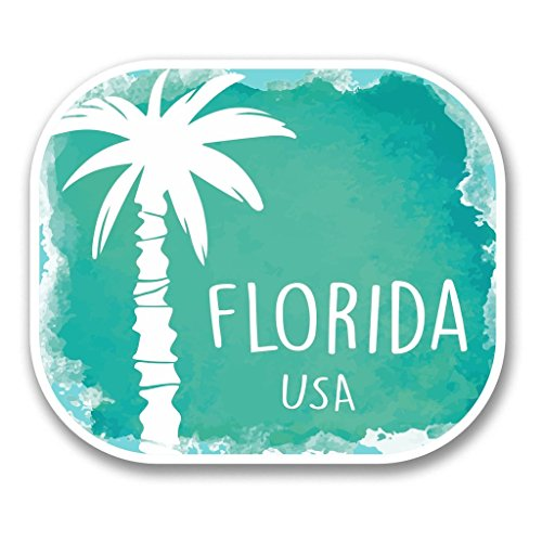 Preisvergleich Produktbild 2 x Florida USA vinyl Aufkleber Aufkleber Laptop Reise Gepäck Auto Ipad Schild Fun 6348-10cm / 100mm Wide
