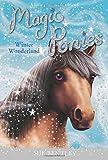 51S0Bsu7wJL. SL160  UK BEST BUY #1Winter Wonderland (Magic Ponies) price Reviews uk