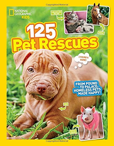 125-pet-rescues-from-pound-to-palace-homeless-pets-made-happy