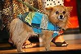 Wahnsinn! Das kannst du auch Für Hunde nähen!: Hundemäntel selbstgemacht .Werkanleitungen mit Witz (Edition Unkengold)
