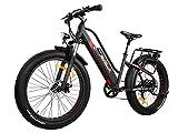 Addmotor Motan Vélo électrique Moteur de 500W étape facile à travers E Bike 48V 10.4Ah Batterie au lithium Full Suspension 66cm Fat Pneu vélo électrique 2018M-450pour adultes, noir/rouge