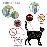 Hemore Collar de pulgas para Perro, para prevención de pulgas y garrapatas, Ajustable, de pulgas Naturales y garrapatas, hipoalergénico, Resistente al Agua, para Perros y Mascotas