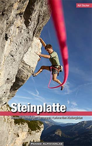 Kletterführer Steinplatte: Wiesloch, Wemeteigen, Sonnwandl, Loferer Alm und Klettergärten
