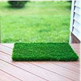 Bath Market Arificial Grass For Balcony Or Doormat, Soft And Durable Plastic Turf Carpet Mat, Artificial Grass (2 X 1.5 Sq. Feet)