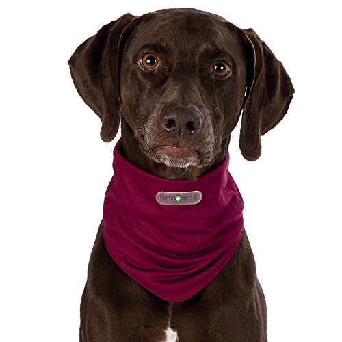 Trixie 30421 Insect Shield Dog Loop, XS