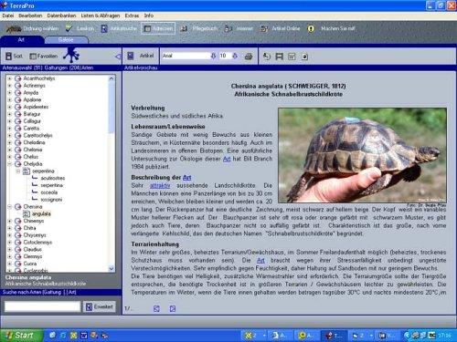 Schildkröten, 1 CD-ROM Für Windows 98SE/ME/2000/XP