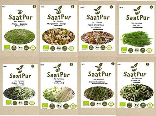 SaatPur Bio-Keimsprossen Sortiment (8 Sorten) Alfalfa, Brokkoli, Daikon Rettich, Kresse, Mungo Mungbohne, Radies, Rauke, Weizen
