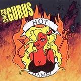 Songtexte von Mojo Gurus - Hot Damn